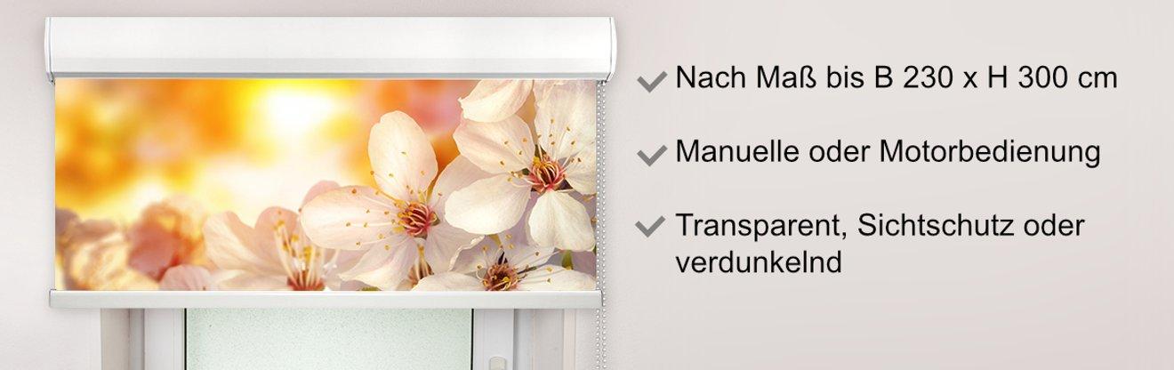 Headerbild zum Kassettenrollo mit Bild bedruckt mit Apfelblüten als Motiv und Beschreibung des Kassettenrollos