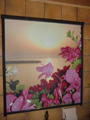 Foto Rollo mit Motiv Blume